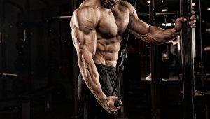 مصرف گلوتامین در ورزش